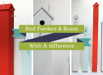 Bird Feeders & Boxes With A difference