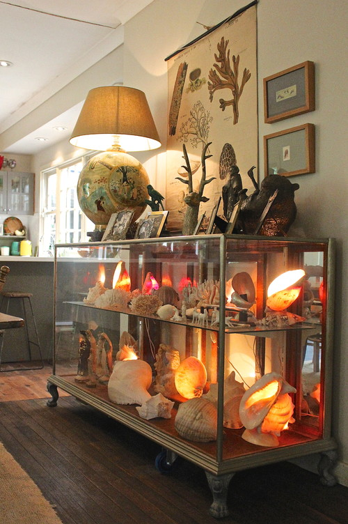 11 Unique Ways To Use Shells In Your Home Decor - Image From Houzz.co.uk - Photo by Luci.D Interiors