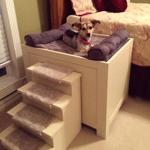How To Design A Dog Friendly Home - Raised Dog Bed With Steps