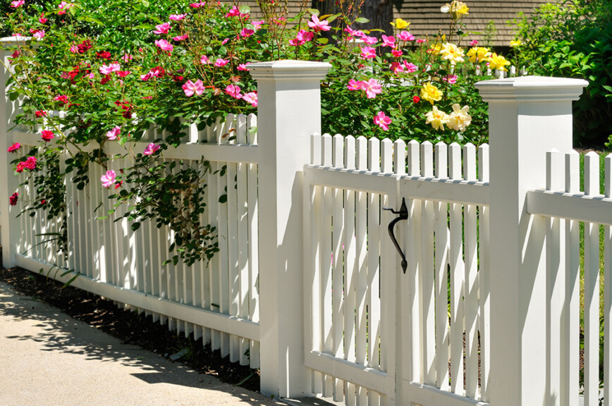 Cute white wooden cottage fence and gate with roses